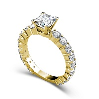 2.75CT Princess and Round Cut Diamonds Engagement Ring
